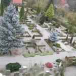 Sædder Kirkegård - set fra nord